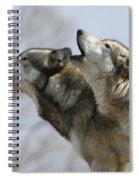 Duet Howl Spiral Notebook