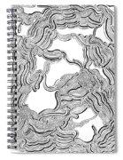 Dulcinea Spiral Notebook