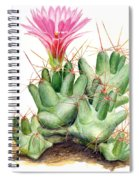 Dumpling Cactus Spiral Notebook
