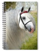 Dunbrody Spiral Notebook