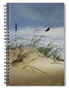 Dune And Beach Grass Spiral Notebook