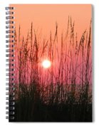 Dune Grass Sunset Spiral Notebook