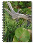 Dune Plants Spiral Notebook
