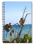 Dune Plants Spiral Notebook