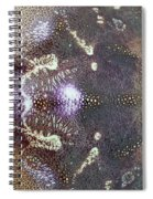 Dungeness Crab Shell Spiral Notebook