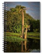 Dunlawton Pond Spiral Notebook