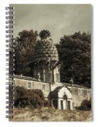 Dunmore Pineapple. Vintage  Spiral Notebook