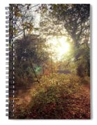 Dunmore Wood - Autumnal Morning Spiral Notebook