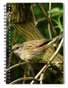 Dunnock In A Hedgerow Spiral Notebook