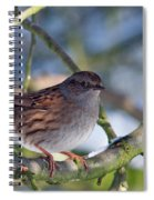 Dunnock On A Snowy Day In Winter Spiral Notebook