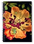 Durango Outback Mix 02 - Photopower 3200 Spiral Notebook