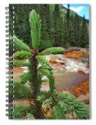 Durango Pass Spiral Notebook
