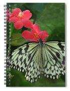 Durham Butterfly #5 Spiral Notebook
