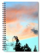 Dusk And Dogs Spiral Notebook