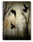 Dusk Begins As The Crows Fly Spiral Notebook