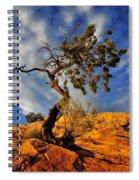 Dusk Dance Spiral Notebook