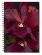 Dusty Red Orchid Spiral Notebook