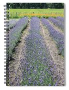 Dutch Lavender Field Spiral Notebook