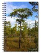 Dwarf Cypress Tree Spiral Notebook
