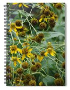 Dying Sun Flowers Spiral Notebook