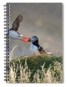 Dyrholaey Puffins Spiral Notebook