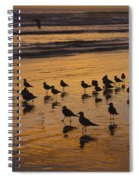 Eager Anticipation Spiral Notebook