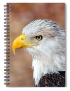 Eagle 10 Spiral Notebook