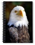 Eagle 23 Spiral Notebook