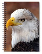 Eagle 25 Spiral Notebook