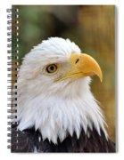 Eagle 6 Spiral Notebook