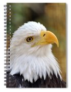 Eagle 9 Spiral Notebook