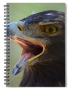 Eagle Cry Spiral Notebook