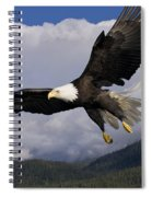 Eagle Flying In Sunlight Spiral Notebook