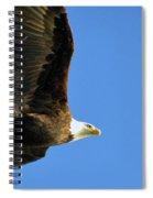 Eagle In Flight Spiral Notebook