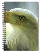 Eagle Majesty Spiral Notebook