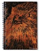 Eagle Metallic Copper Spiral Notebook