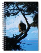 Eagle - Mt Baker - Eagles Nest Spiral Notebook