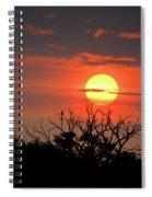 Eagle Nest Sunrise Spiral Notebook
