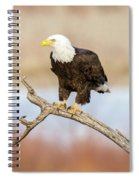 Eagle Overlooking Colorado River Spiral Notebook