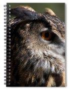 Eagle Owl 4 Spiral Notebook