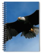 Eagle Pride Spiral Notebook