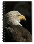 Eagle Profile 1 Original Photo Spiral Notebook