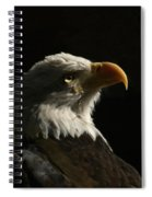 Eagle Profile 4 Spiral Notebook