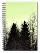 Eagle Silhouette Spiral Notebook
