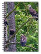 Eagle Tree Spiral Notebook