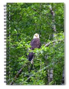 Eagle Watch Spiral Notebook