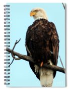 Eagle Watching Spiral Notebook