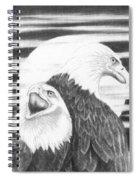 Eagles Spiral Notebook