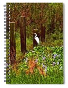 Egret And Heron Spiral Notebook