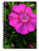 Early Bloomer Spiral Notebook